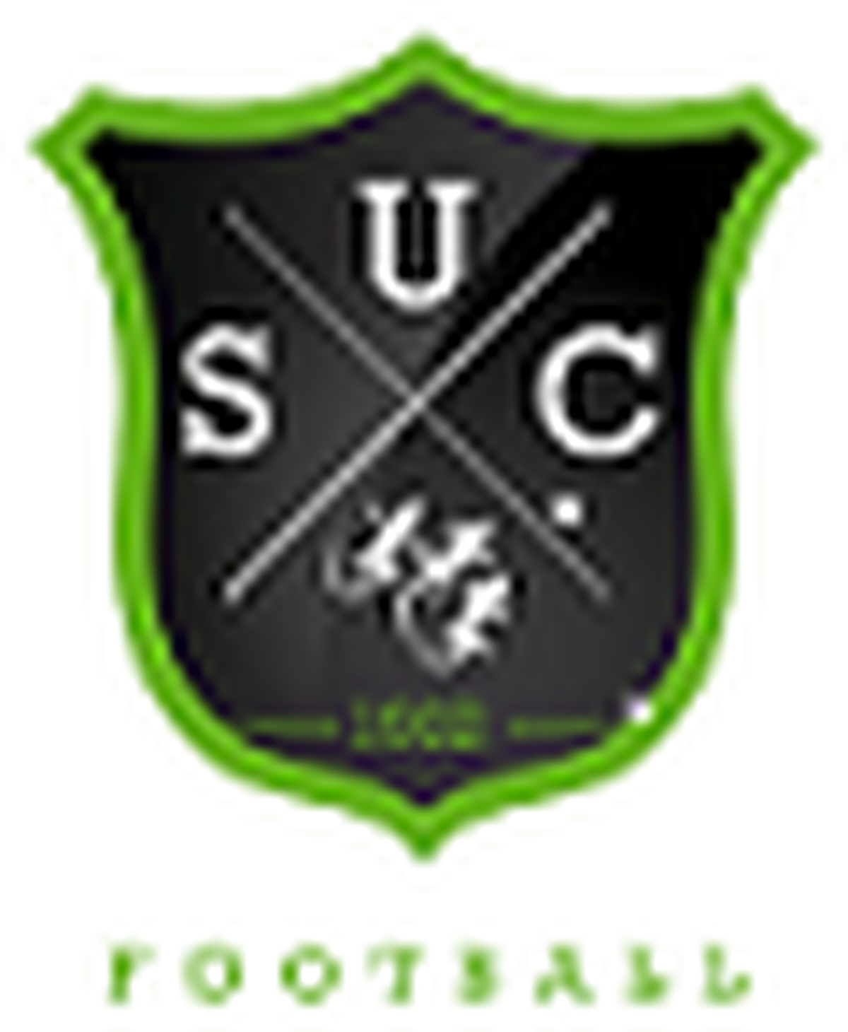 logo du club UNION SPORTIVE CASTELNEUVIENNE FOOT